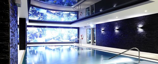 Novotel London Brentford: Swimming Pool