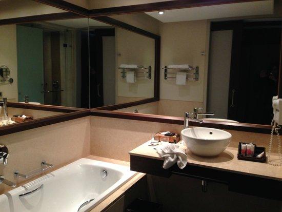 Dreams Los Volcanes: visión parcial del baño