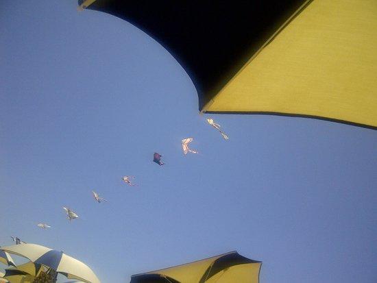 Bibione, Italy: Ombrelloni distanti per un relax assicurato