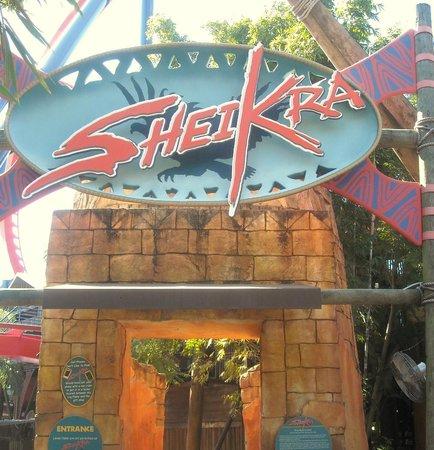 Picture Of Busch Gardens Tampa Tampa Tripadvisor