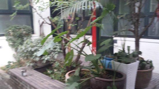 Peking Yard Hostel : courtyard