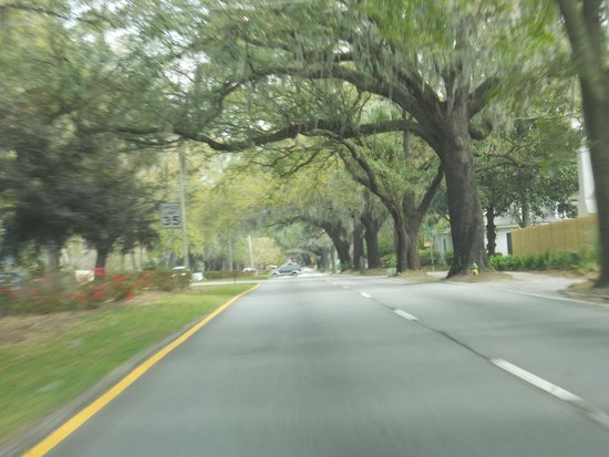 Oglethorpe Inn & Suites: Abercorn Street from hotel to historic district