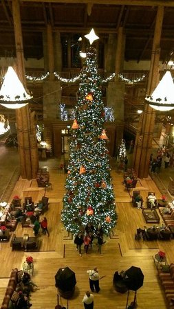 Christmas tree in main lobby - Picture