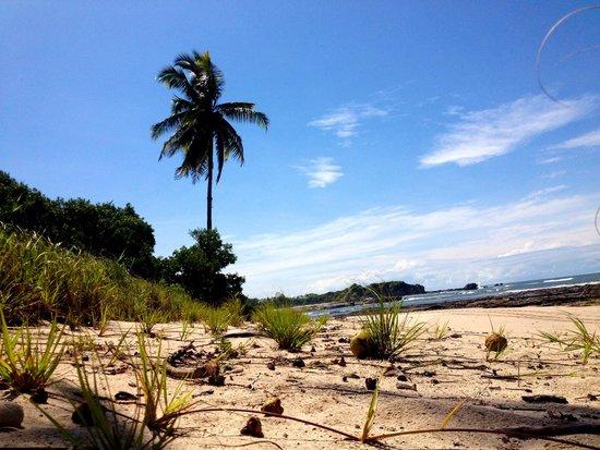 Hotel Boutique Lagarta Lodge: Empty beaches, great surf