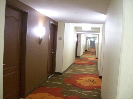 Hilton Garden Inn Mt Laurel Interior Hallway To Rooms
