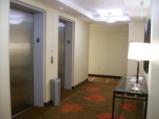 Hilton Garden Inn Mt Laurel Interior Elevator Bank