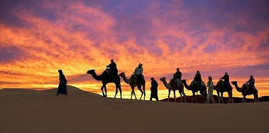 https://media-cdn.tripadvisor.com/media/photo-s/06/cf/eb/9f/camel-ride-sahara-desert.jpg