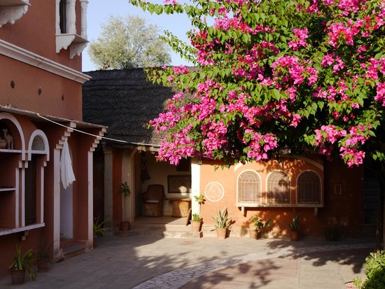 Apani Dhani Eco-Lodge : Notre bungalow