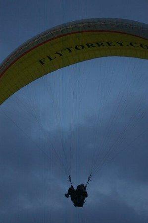 Torrey Pines Gliderport: Closeup of paraglider