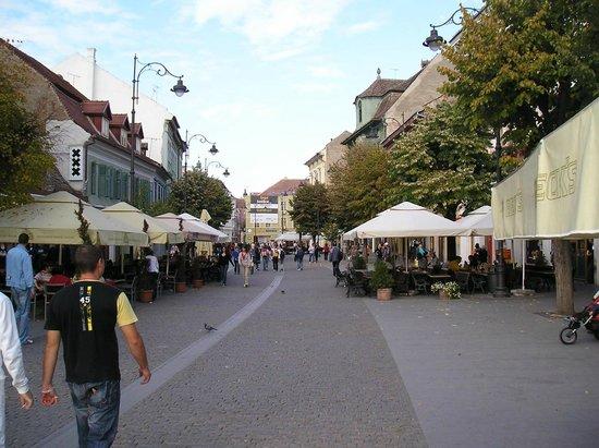 Sibiu, Romania: Nicolas Balcescu