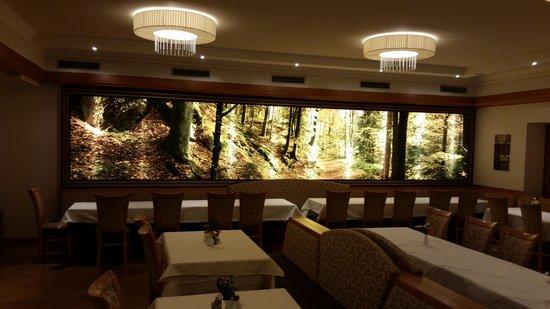 Hotel Auhmuehle: speisesaal