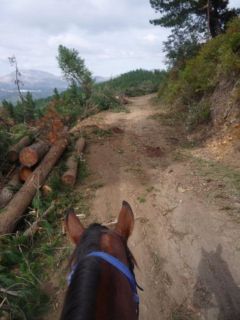 Ride Andalucia: Beautiful scenery