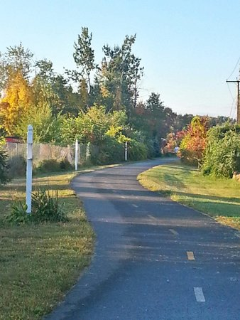 Paved trail at Fall time