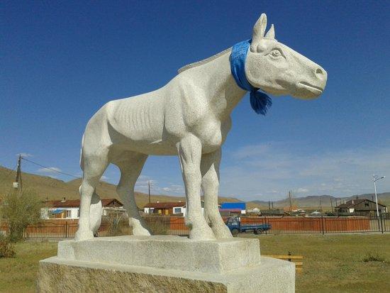 Zavkhan Trekking - Day Trips: There's horses everywhere in Mongolia!