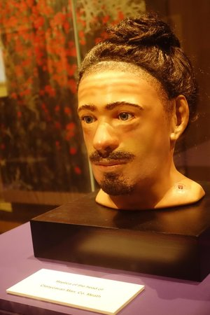 National Museum of Ireland - Archaeology: Reconstructed face of the Clonycavan Man.