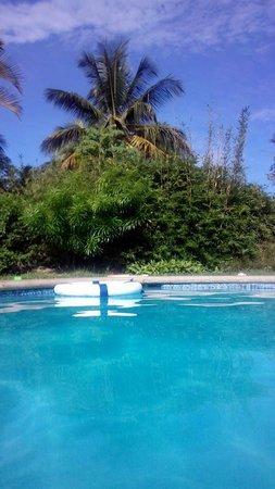 Coral Sea Villas: bamboo and palm affording privacy