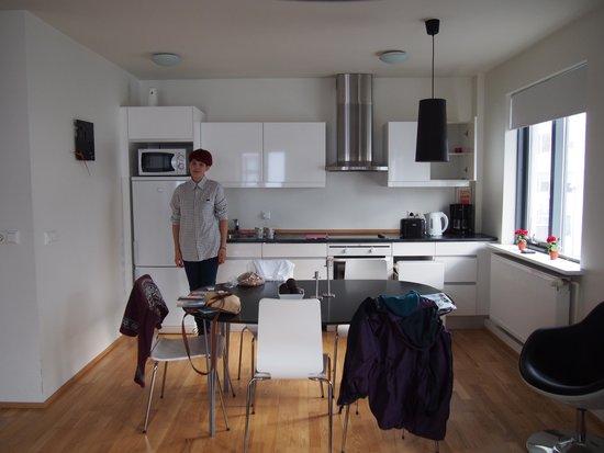 Reykjavik4you Apartments Hotel : Kitchen