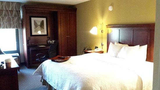 Hampton Inn Detroit / Madison Heights / South Troy: King Room