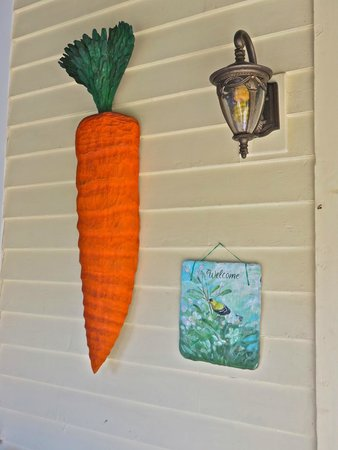 Armistead Cottage: The Carrot welcome