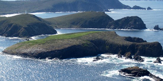 Bruny Island Safaris