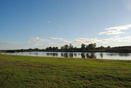 Agricampeggio Lago Le Tamerici : Uitzicht op het meer vanop plaats 44