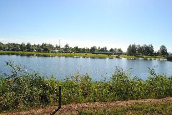 Agricampeggio Lago Le Tamerici : Uitzicht op de camping aan de overkant van het meer
