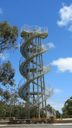 DNA Tower Climb