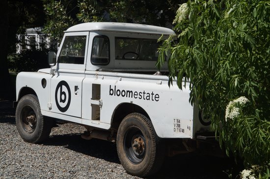 Bloomestate: sturdy environment