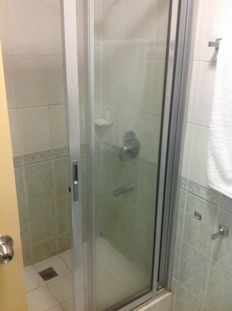 Manila Airport Hotel : Shower (Did have hot water)