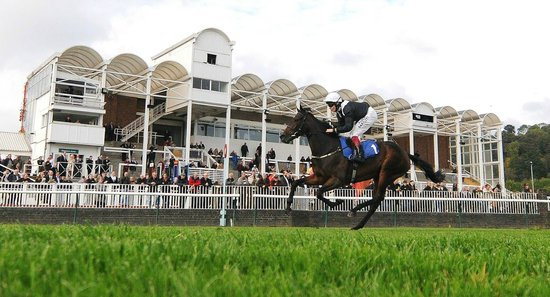 Image result for nottingham racecourse