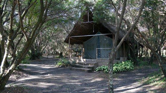 Enchoro Wildlife Camp: Accommodation