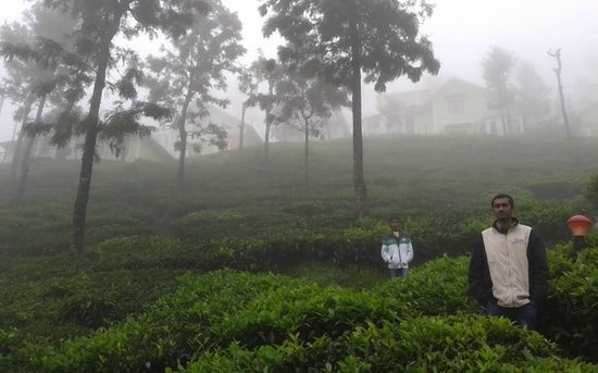 United-21 Paradise, Ooty: Tea Garden view