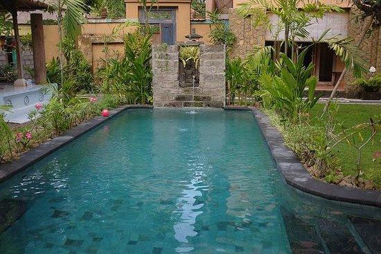 Sanur Bed & Breakfast: Swimming pool