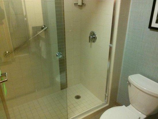 Hyatt Place Itasca: Shower only, no bathtub
