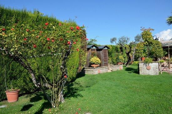 County House Il Roseto: un angolo del giardino