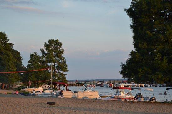 Palmetto Shores Rv Resort Updated 2017 Campground