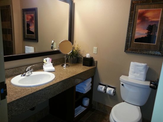 The Lodge at Deadwood: Roomy bathroom