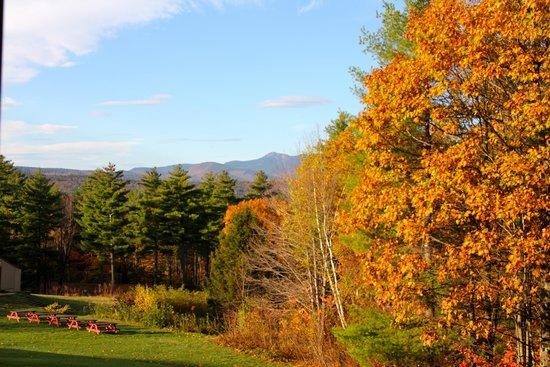 Fox Ridge Resort: View from room 207