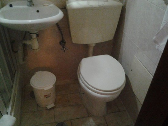 Hotel Excelsior: wc