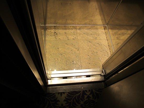 Hotel Odeon Saint-Germain: Elevator
