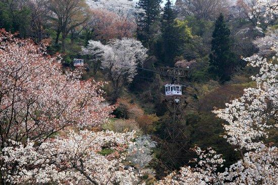 Yoshinoyama Ropeway