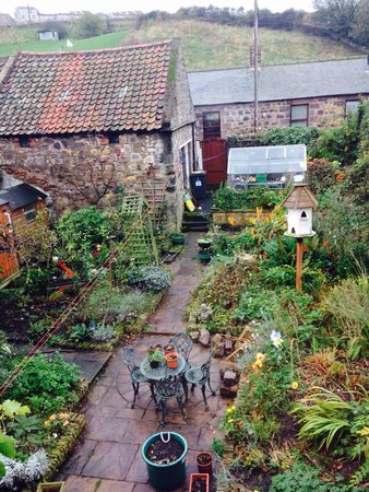 Caroline House: The view from our window of the well established garden.