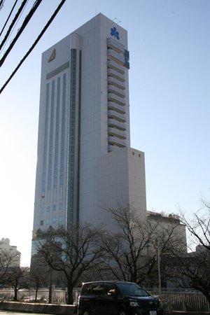 Hotel Nikko Kochi Asahi Royal: 高層なので離れないと撮影できませんでした