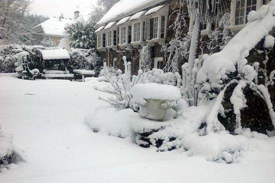 Bella Luce: Winter at the bella