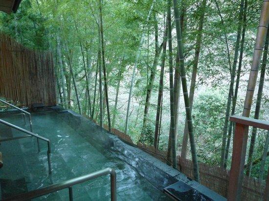Hotel Hatsuhana : 女性用露天風呂からの景色です。