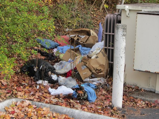 Red Roof Inn Knoxville North - Merchants Drive: Garbage behind electrical box