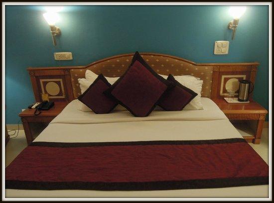 Hotel Shri Ram Excellency: Room...2