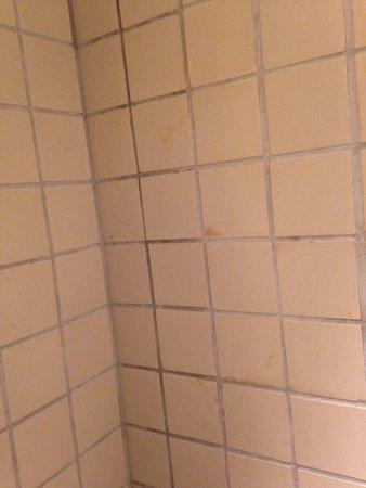 Hotel Im Wasserturm: Shower