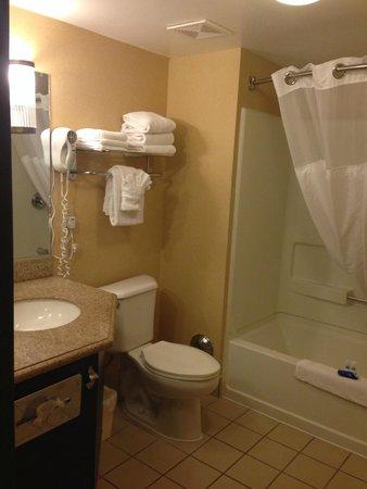 BEST WESTERN PLUS Newport Beach Inn: Bathroom