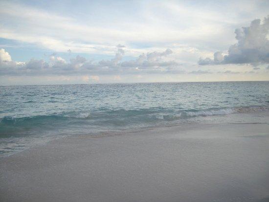 Elbow Beach, Bermuda: The Beach!!!